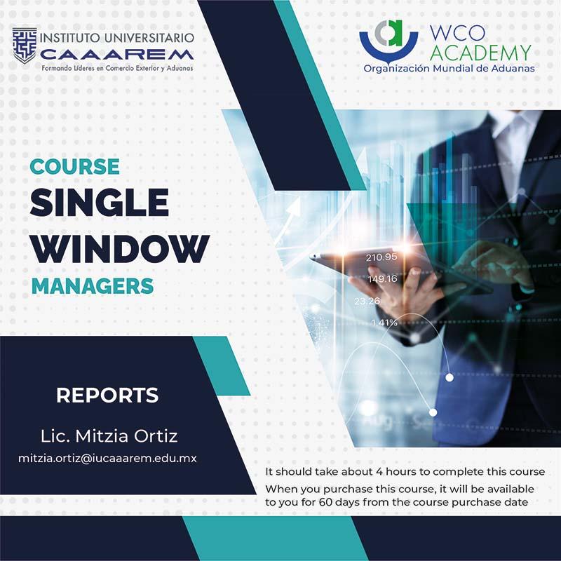 SINGLE WINDOW